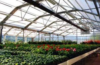 پوشش سقف گلخانه